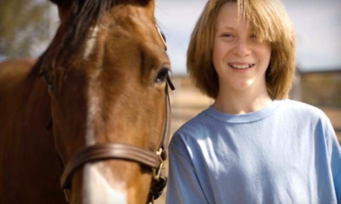 RHC Riding Academy - Pleasureville: $15 for a Private Horseback-Riding Lesson at RHC Riding Academy in Pleasureville ($35 Value)