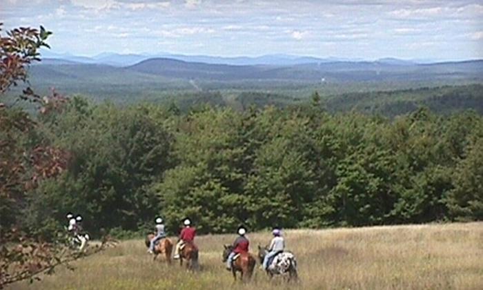Carousel Horse Farm - Casco: $25 for Beginner Trail Ride at Carousel Horse Farm ($50 Value) in Casco
