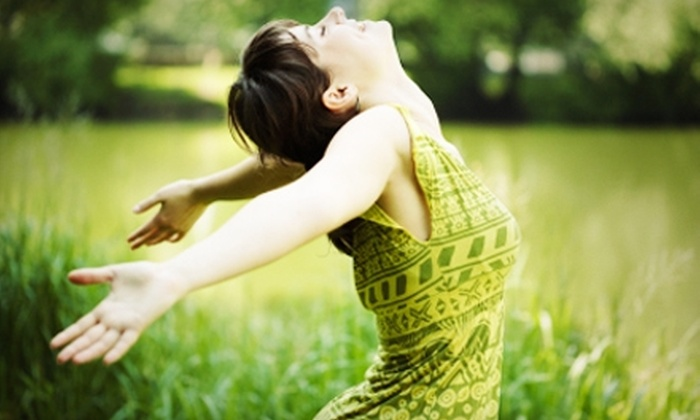 Ottawa Wellness Doctors - Multiple Locations: $39 for a Wellness Checkup and Chiropractic Adjustment at Ottawa Wellness Doctors Locations ($217 Value)