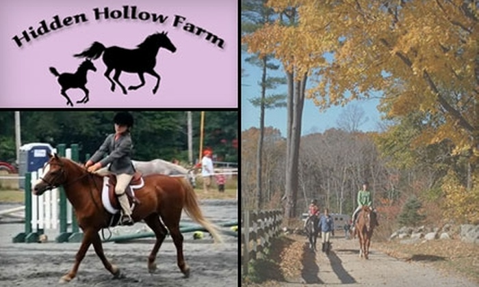 Hidden Hollow Farm and Stables - Pembroke: $35 for a One-Hour Private or Group Riding Lesson at Hidden Hollow Farm and Stables