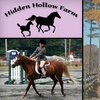 Up to 46% Off Horse-Riding Lesson