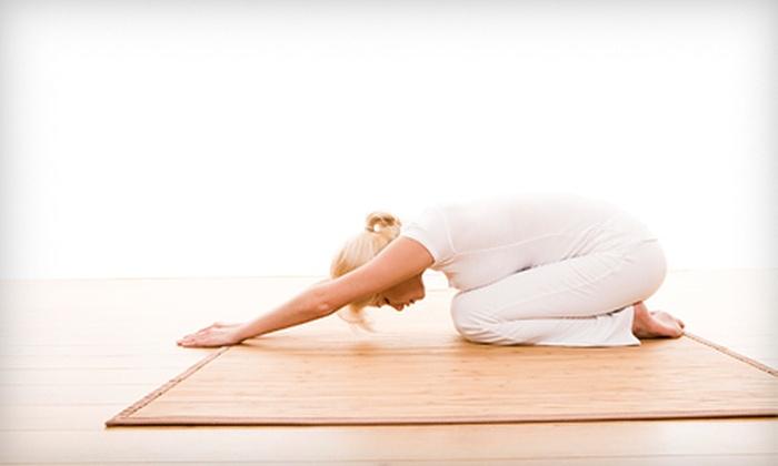 Purple Monkey Yoga Studio - Union City: $40 Worth of Yoga, Piloxing, and Zumba