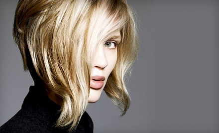 Cut and Color Package (a $120 value) - Hair Whisper Salon in Durham