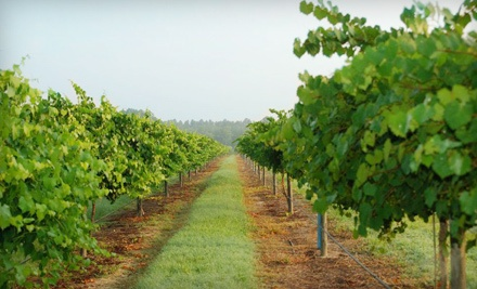 Wine-Tasting Outing for 2 (a $86 value) - Cypress Bend Vineyards in Wagram