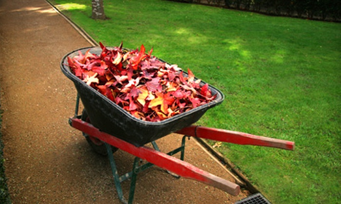 Greensvue Landscaping - Windsor: Fall Cleanup or Fall Lawn-Prep Package from Greensvue Landscaping