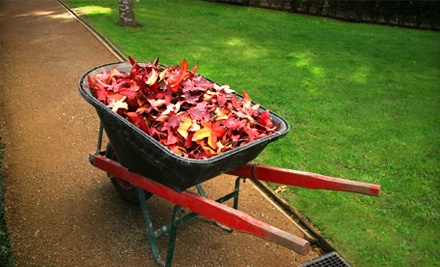 Fall Cleanup and Disposal for 2 Hours (a $120 value) - Greensvue Landscaping in