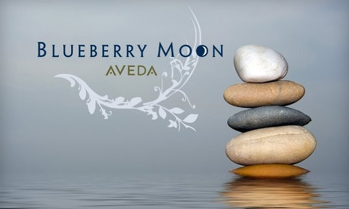 Blueberry Moon - Lincoln Park: $140 for an Aveda Green Science Facial with a Peel, Eye Treatment, Décolleté Finish, Chakra Balancing, and Hand Treatment at Blueberry Moon ($280 Value)