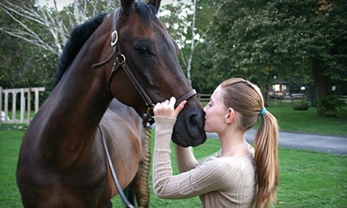 Stone Ledge Farm - Roscoe: $17 for Half-Hour Horse-Riding Lesson at Stone Ledge Farm in South Beloit ($35 Value)