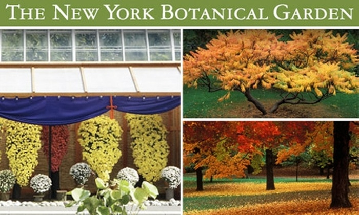 New York Botanical Garden   Bronx Park: $10 For All Garden Admission Ticket  To