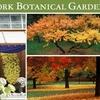 Half Off at New York Botanical Garden