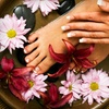 Up to 61% Off Mani-Pedi at Shear Style