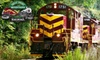 Great Smoky Mountains Railroad - Bryson City: Ticket on the Nantahala Gorge Excursion at Great Smoky Mountains Railroad in Bryson City. Two Options Available.
