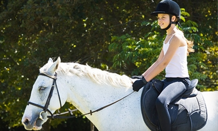 Pegasus Riding School - Medina: $25 for a One-Hour Equine Experience at Pegasus Riding School in Medina ($50 Value)