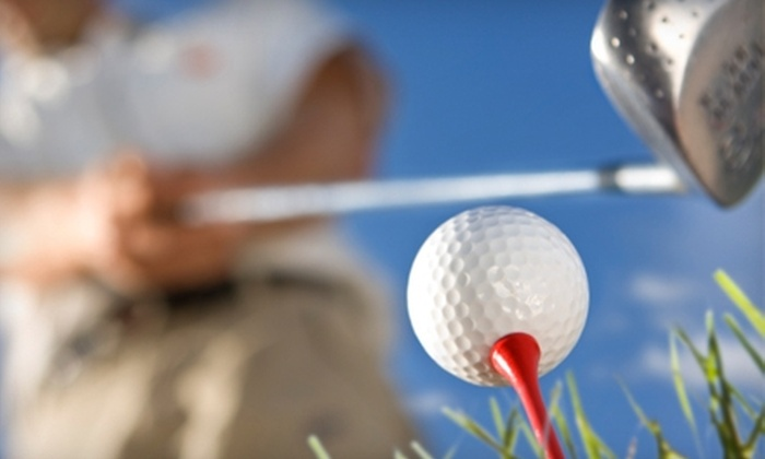 Ron Curran's Instant Bogey Golf - Evandale: $50 for a One-Hour Golf Lesson at Ron Curran's Instant Bogey Golf in Evendale