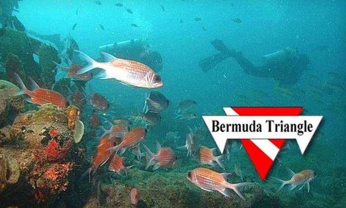 Bermuda Triangle - Greenville: $29 for Discover Scuba Course at Bermuda Triangle ($79 Value)