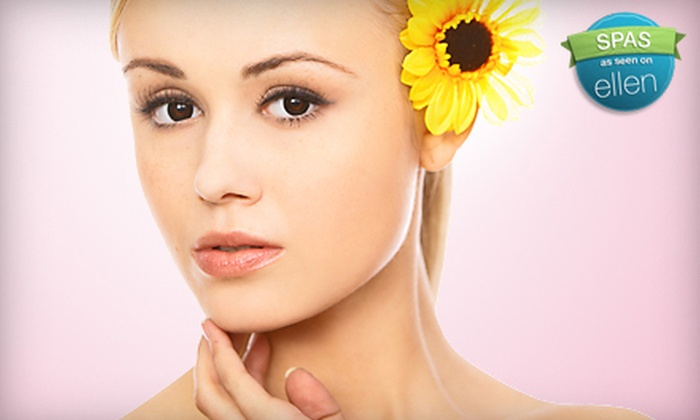 Le Cheval Day Spa - Palm Valley: $60 for Microdermabrasion at Le Cheval Day Spa in Ponte Vedra Beach ($120 Value)
