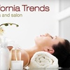 63% Off Salon and Spa Services