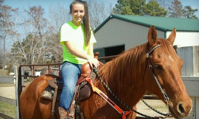 Green Haven Horse Stables - Greystone: $87 for One Week of Summer Camp at Green Haven Horse Stables in Alexander ($175 Value)