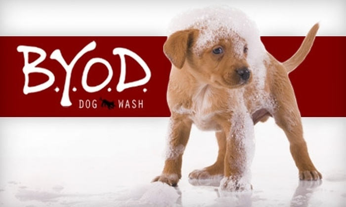 B.Y.O.D. Dog Wash - Multiple Locations: $15 for a DIY Self-Service Wash with Nail Trim ($32 Value) or $22 for a Drop-Off Wash Package with Nail Trim ($45 Value) at B.Y.O.D. Dog Wash