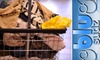 oob - Blu Sudz - Camelback East: $20 for $40 Worth of Laundry Services at Blu Sudz