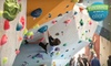 Up to 69% Off at Toronto Climbing Academy