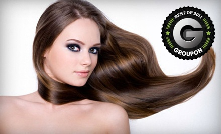 Women's Hair-Styling Package (a $70 value) - Ossia Salon and Spa in Waterloo