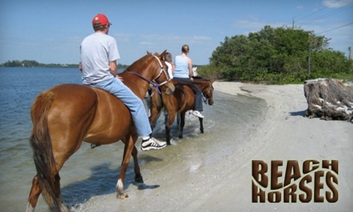 BeachHorses.com - Bradenton: $40 for Horseback Ride from BeachHorses.com ($84.95 Value). Choose from Beach or Trail Ride Options.