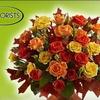 Half Off Floral Workshop