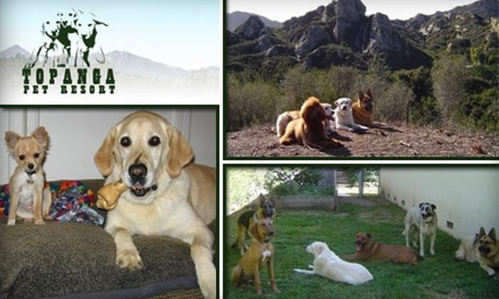 Topanga Pet Resort - Agoura Hills-Malibu: $39 for a Three Nights' Stay for Your Dog at Topanga Pet Resort (Up to $147 Value)