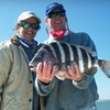 Half Off Half-Day Fishing Charter