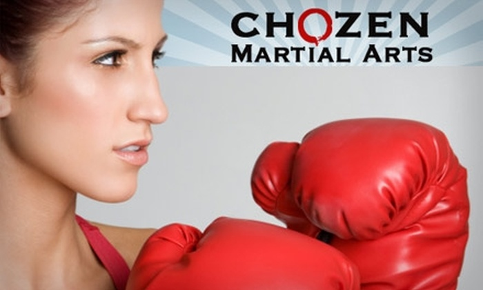 Chozen Martial Arts - Multiple Locations: $25 for 10 Classes at Chozen Martial Arts ($159 Value)