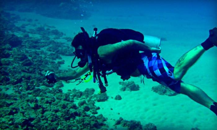 Poseidon's Divers - Mission Beach: $25 Toward Scuba Courses or Dives