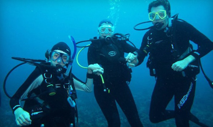 Boynton Beach Dive Center - Coquina Cove: Open-Water Diving Experience or Open-Water Diving-Certification Course at Boynton Beach Dive Center (Up to 57% Off)