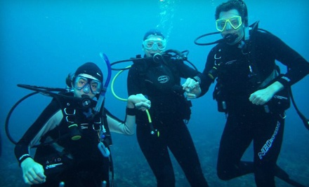 Discover Scuba Open-Water Diving Experience (a $150 value) - Boynton Beach Dive Center in Boynton Beach