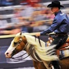 Up to 65% Off Horse-Reining Competition