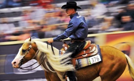 CRI 3* Open FEI Reining at Alltech Arena on Fri., April 27 at 6PM: General-Admission for 2 - Ariat Kentucky Reining Cup in Lexington