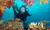 Bluewater Divers - South Oklahoma City: $10 for a Discover Scuba Diving Class at Bluewater Divers ($25 Value)