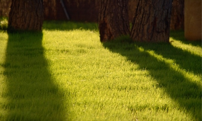Greenside Lawncare - Saint Charles: $25 for Core Lawn Aeration from Greenside Lawncare in St. Charles ($50 Value)