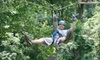 Carolina Ziplines Canopy Tour - Quaker Gap: $40 for a Two-Hour High-Course Zipline Tour at Carolina Ziplines Canopy Tour in Westfield ($80 Value)