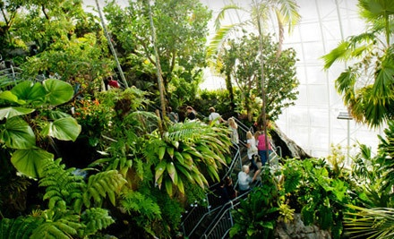 Dual Membership, Valid for 2 Adults (a $50 value) - Myriad Botanical Gardens in Oklahoma City