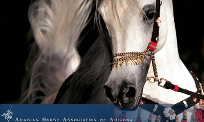 Scottsdale Arabian Horse Show - North Scottsdale: $10 for Two General-Admission Tickets to the Scottsdale Arabian Horse Show