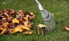 Outdoor Oasis: Fall-Cleanup Package, Lawn Aeration, or Power-Washing Services from Outdoor Oasis (Up to 67% Off)