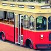 Half Off Hop-On Hop-Off Trolley Tour