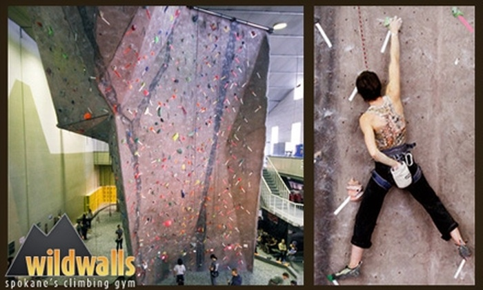Wild Walls Indoor Climbing Gym - Riverside: $15 for a Vertical Introduction Class at Wild Walls Indoor Climbing Gym