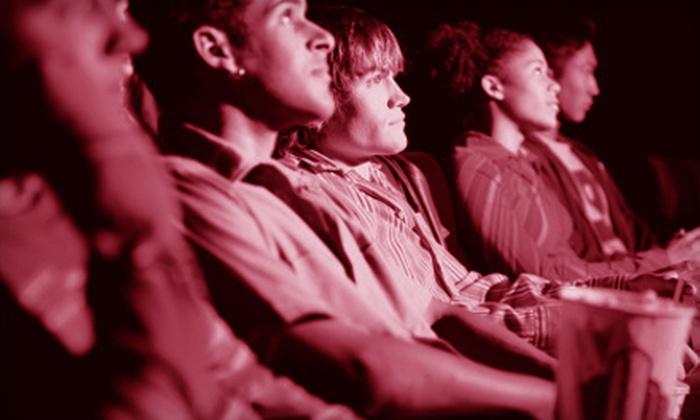 Palo Alto International Film Festival - Downtown North: Admission or Membership to the Palo Alto International Film Festival. Three Options Available.