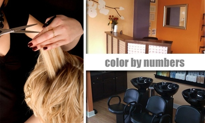 Color By Numbers Salon - Lakewood: $17 Haircut at Color By Numbers Salon (Up to $32+ Value)