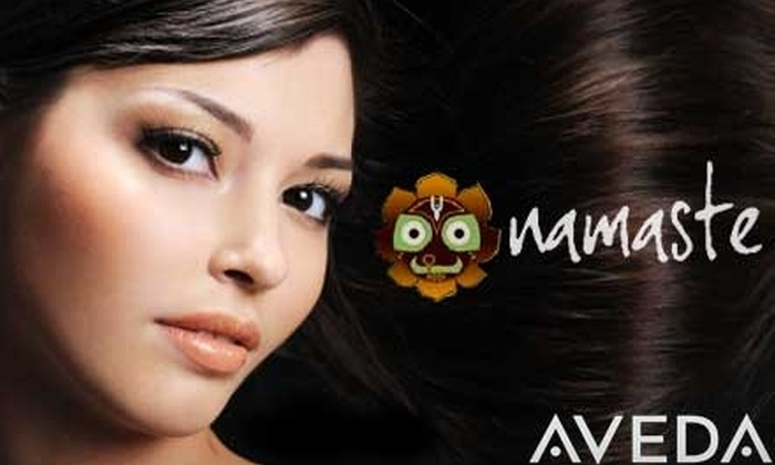 Namaste Salon - Multiple Locations: $25 for an Aveda Botanical Express Conditioning Treatment ($10 Value) and $50 Worth of Services and Products