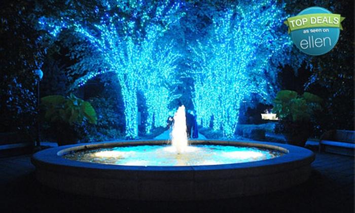 Promo Code Atlanta Botanical Gardens Lights Garden Ftempo