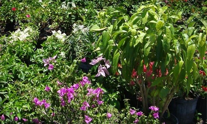 Naples Fertilizer & Garden Centers - Central Naples: $25 for $50 Worth of Gardening Supplies at Naples Fertilizer & Garden Centers