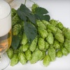 Up to 61% Off Admissions to Holiday Beer Tasting